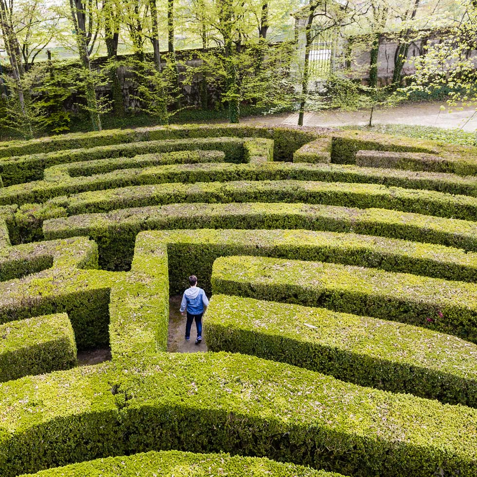A Boy In A Maze Of Green Hedges